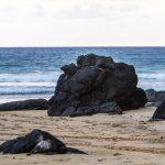 Los impresionantes spots naturales de Costa Canuva #Turismo