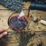 Soy Vino Mexicano, el proyecto que une a toda la cadena productiva vitivinícola #Estilo